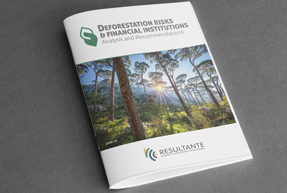 Deforestation Risk & Financial Institutions - Analysis and Recommendations